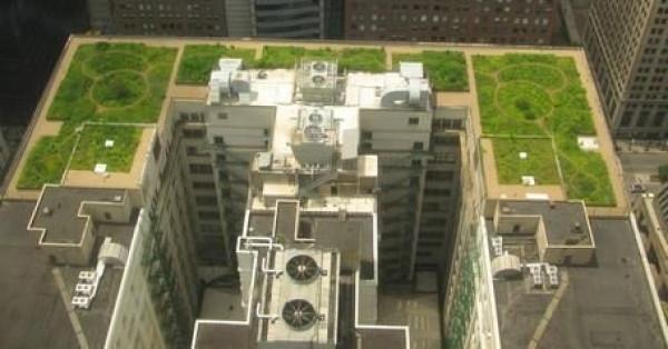 Zielone dachy, czyli architektura z polotem