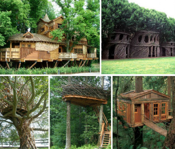 20 Organic Tree Houses Are Naturally Amazing