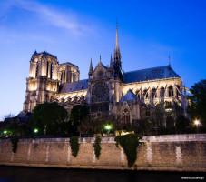 Katedra Notre Dame od Wojciech Andruszkiewicz